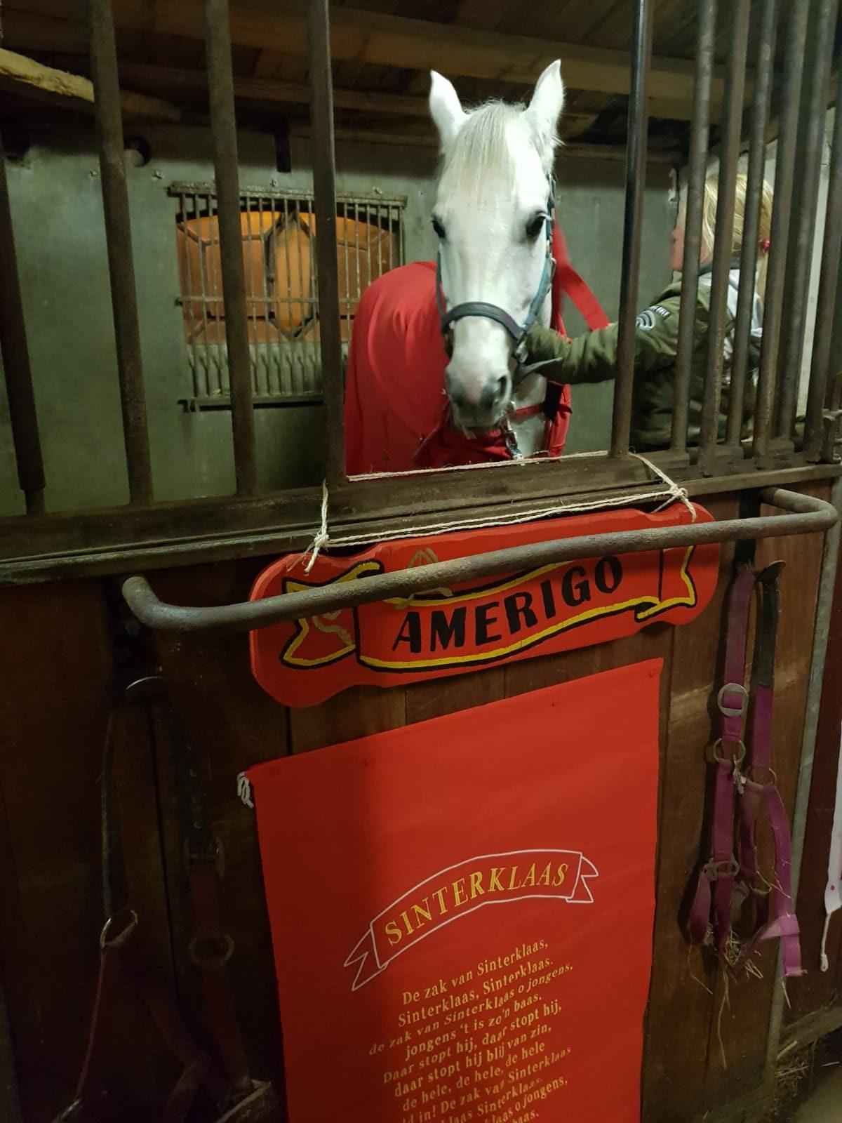 Amerigo, en Sinterklaasintocht Rozenburg